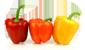 tag paprika icon