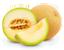 tag melón icon